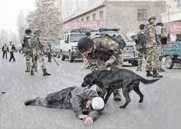 Doğu Türkistan'da Terör Kapitalizmi ile ilgili görsel sonucu